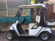 Unusual Transports:Cart