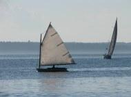 Owen Sails Quick 2
